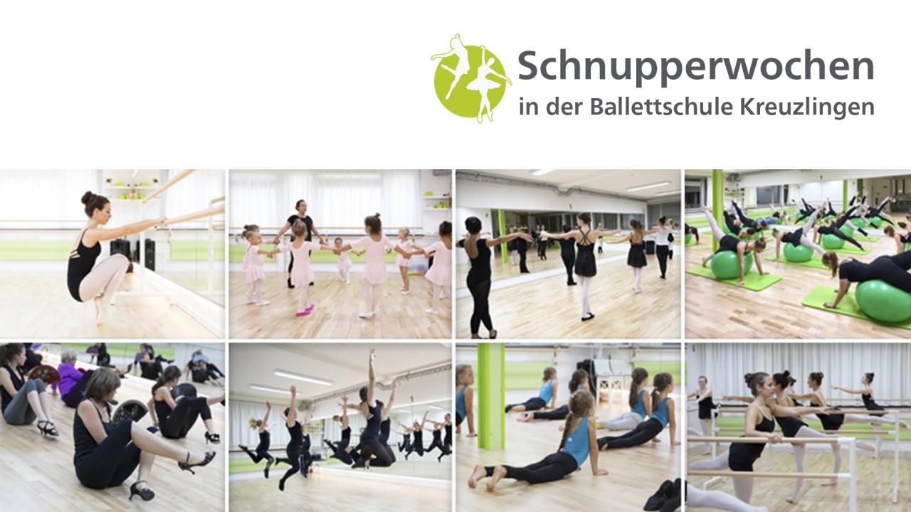 Alle_Bilder_Schnuppern_2018_002